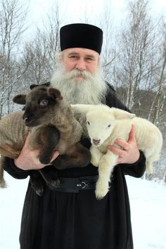 Monk and lambs