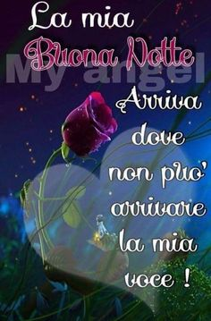 Italian Phrases, Italian Quotes, Good Night, Good Morning, Biscotti, Bella, Anna, Bouquet, Google