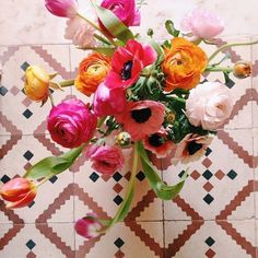 Join this series of mini flower workshops on Zoom for some January flower therapy! Whether you have no flower experience, or are just looking to add more flower arranging practice to your week, these classes are a great way to brighten up your January. All the projects are low-cost and will use accessible ingredients that you can find locally.