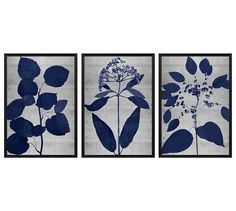 Indigo Silver Leaf Framed Prints | Pottery Barn
