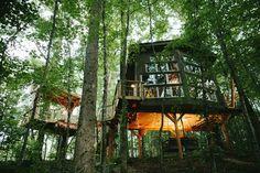40 best treehouses images rh pinterest com