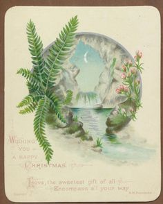 C10926 Good Victorian Xmas Card: Fern & Waterfall | eBay
