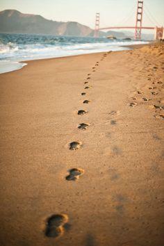 """GANJA // Caminando (Reggae mexicano - 1995) // ♪ ♫ Ya estoy aqui parao, esperando subirme a este barco y estoy viendo hacia el mar   y veo caracolitos volando   No quiero regresar, aunque haya mucha gente esperando, yo quiero irme hacia el mar aunque me vaya yo caminando..."""" ♪ ♫"""