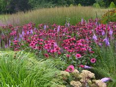 Piet Oudolf garden design