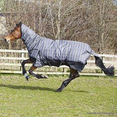 Elico Snowdon Check COMBO Turnout Rug - Black Grey White Check This well-shaped rug has been especially designed by Elico and is ideal for use in the