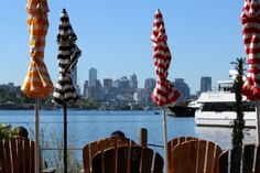the view from Westward on Lake Union in Seattle, grab some fresh oysters, a glass of wine and an Adirondack chair and soak up the sun or warm by the fire pit, located in the south part of Wallingford...for more airbnb neighborhood recommendations follow link.    #seattlewashington #glutenfree  #seattletravel  #discoveryparkseattle  #kayak  #seattlerestaurants