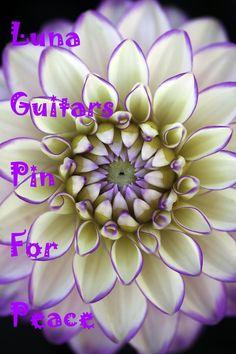 Luna Guitars Pin For Peace ♡ My Positive Influences on the Path to Peace @Luna Guitars