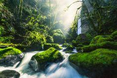 Elowah Falls in Oregon Photo in Album Landscapes - Photographer: MichaelMatti