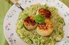 Savory Moments: Seared scallops over pearl couscous with peas and garlic scape sauce