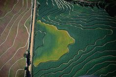 harvestheart:  Aerial Photography - FIELDS from Lonely Planet