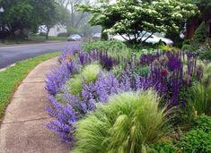 Cool 42 Amazing Alliums Garden Landscape in the Backyard https://toparchitecture.net/2017/12/15/42-amazing-alliums-garden-landscape-backyard/