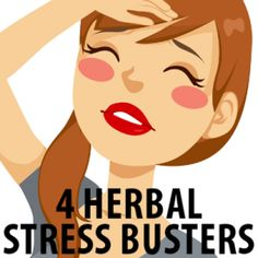 """July 4 2014/ March 3 2014 - """"Dr. Oz's Ultimate Anti-Aging Guide"""" - Dr Oz Herbal Stress Busters: Ashwagandha, Rhodiola, Astragalus and Ginger Tea"""