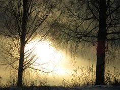 sunrise Nature Photography, My Photos, Sunrise, Nature Pictures, Wildlife Photography, Sunrises