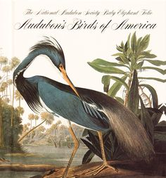 Audubon's Birds of America cover, between 1827 and 1838