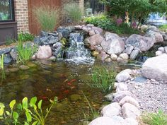 Backyard Pond With Waterfall Photos