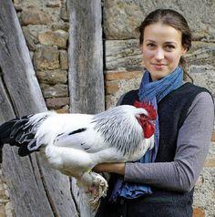 Die Liebe zum Federvieh geht auch durc...mit einem prächtigen Sundheimer Hahn.   | Foto: privat
