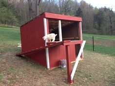 Red goat barn with a ramp going to a shelf platform which also extends inside the barn.  Made it ourselves!