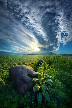 https://flic.kr/p/vJig59 | The Rock | Wisconsin Horizons By Phil Koch. Lives in Milwaukee, Wisconsin, USA. phil-koch.artistwebsites.com
