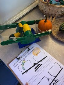 Math and Science skills can be placed throughout the room during an investigation. They can in the form as a provocation, and invitation or just added materials into interest areas. Autumn Activities, Fall Harvest, Early Childhood, Kindergarten, Knowledge, Invitations, Explore, Reggio, Pumpkins