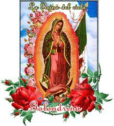 100 imágenes de la Santísima Virgen de Guadalupe - Reina de México y Emperatriz de América - La Guadalupana | Banco de Imágenes Gratis