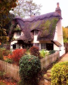 2170 best cottage dreams images on pinterest in 2019 cottage rh pinterest com