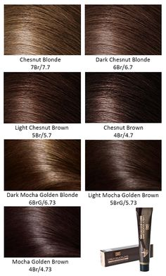 Clairol S Hair Color Chart Different Blonde Brown Red Dark