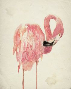 Flamingo Art Print from my Original Illustration - 8x10 Coral Pink Flamingo Illustration. $13.50, via Etsy.