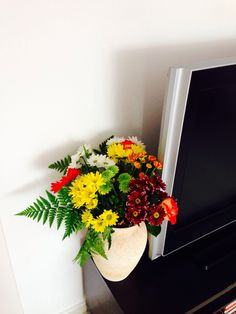 #chillax in the office of www.lanzarote-webdesign.com - fresh flowers are the best flowers ;)