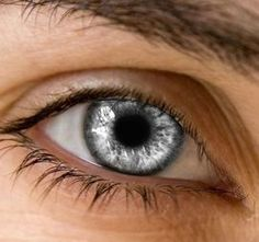 Jelina and Darien's eye color (Silver Eye by Hyper-Child) Pretty Eyes, Cool Eyes, Beautiful Eyes, Story Inspiration, Writing Inspiration, Character Inspiration, Rogue Assassin, Toni Mahfud, Aesthetic Eyes