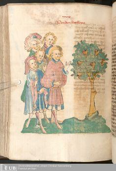 492 [244v] - Ms. Carm. 1 (Ausst. 47) - Das Buch der Natur - Page - Mittelalterliche Handschriften - Digitale Sammlungen  Hagenau, [um 1440]