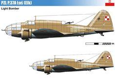 PZL P.37A Łoś – polski średni samolot bombowy. Rys. Vincent Bourguignon.