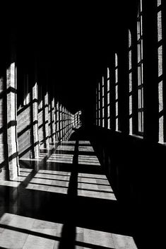 The halls of this building represent contrast. This hall is dark to begin with. Luckily, the windows provide the light and makes this photo unique. The other element that makes this different is that it was taken in black and white. The shadows are now very noticeable. It has that look that makes it curious.