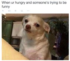 When it's not the time for laughter: | 23 Pictures That Perfectly Sum Up Your Relationship With Food