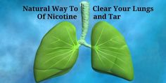 If you are planning to clear your lungs of nicotine, tar or any contamination from daily breathing, the best way is by using plants and natural food.