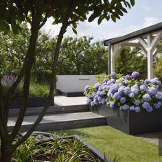 Tuinstijlen die aangelegd zijn door De Groot Hoveniers. U kunt gemakkelijk alle tuinen filteren op categorie en vele soorten tuinen bekijken. De Tuinstijlen die u ziet zijn voltooide projecten van De Groot Hoveniers. U kunt hier inspiratie opdoen voor u eigen tuin maar u kunt ook gebruik maken van ons moodboard.