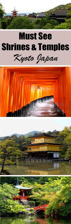 If you are looking to experience traditional Japanese culture, you'll definitely want to check out these must visit shrines and temples in Kyoto, Japan. Recommendations include Fushimi Inari, Kinkakuji, Kiyomizudera, and more. Read the full article to see all the recommendations. Don't forget to pin this to your travel, asia, and japan related boards! | #shrines #temples #Kyoto #Japan