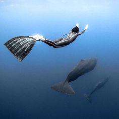 """""""#дайвинг #дайв #погружение #подводой #подводныймир #дайвингидругоймир #вода #интересное #факты #красота #море #океан #дайвер #отдых #позитив #diving #diver #underwater #dive #divingandotherworld #ocean #sea #scubadiving #акваланг #scuba"""" Photo taken by @divingandotherworld on Instagram, pinned via the InstaPin iOS App! http://www.instapinapp.com (10/19/2015)"""