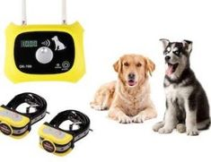 Dog Fence - You've Thought It Was! The Techniques To Getting Along With Your Dogs Wireless Dog Fence, Save A Dog, Pet Dogs, Pets, Training Your Puppy, Dog Care Tips, Pet Life, Outdoor Dog, New Puppy