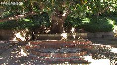 Los Jardines de Puerta Oscura se sitúan a los pies del Monte de Gibralfaro, en las faldas de la Alcazaba de Málaga.
