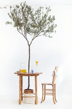 How about bringing the Mediterranean to your terrace, garden or balcony? barefootstyling.com