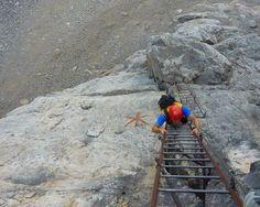 Via Ferrata Oliva Detassis - Klettersteig - Tour Trentino