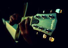 Taylor Guitar exellent sound