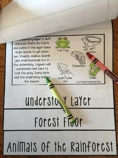 Rainforest Animals FLIP Book Easy to cut, color and glue! Great for your science unit on the layers of the rainforest, rainforest animals and endangered animals!