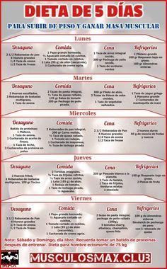 Dieta de hipertrofia para iniciantes