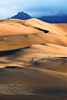 Great Sand Dunes National Park. The tallest dunes in North America are up to 750 feet (230 m) tall.