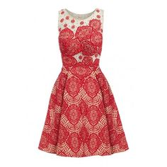 D.Anna Floral Lace Embroidered Skater Dress in Red and Nude ($94) ❤ liked on Polyvore featuring dresses, lace cocktail dress, floral skater dress, lace dress, red evening dresses and red lace dress