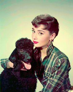 Audrey Hepburn. ♥