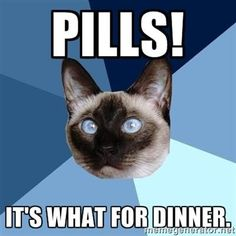 BREAKFAST! I have to laugh at this..too true! Anyone that takes meds for a thyroid disorder, or in my case, no thyroid..~knows~ no eating for 2 hrs after taking..so breakfast has been a thing of the past for quite some time, as has creamer/milk in the morning coffee. -.-