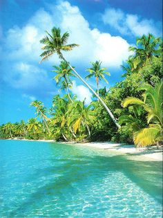 Aitutaki, Cook Islands, I shall be seeing you in July!!!