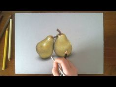 Realistic drawing - how to draw pears